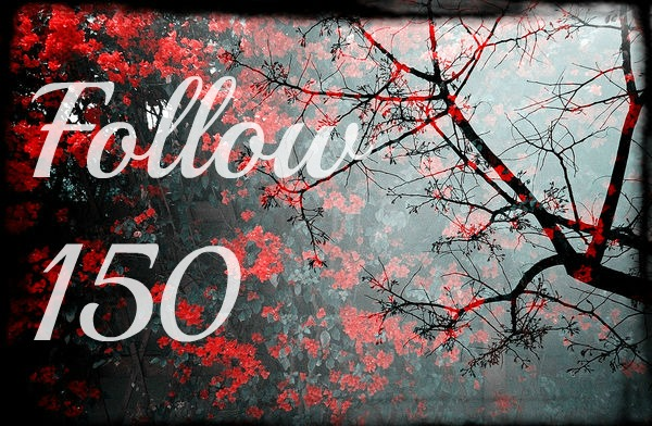 QuestFollow150